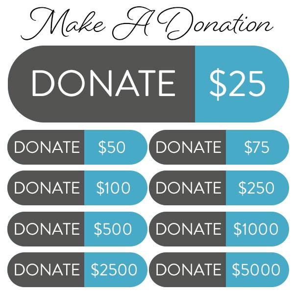 make a donation to standupgirl