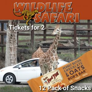 snackin safari