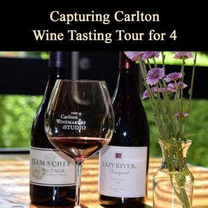 wine makers studio carlton oregon